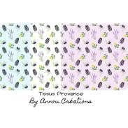 Provence cigales